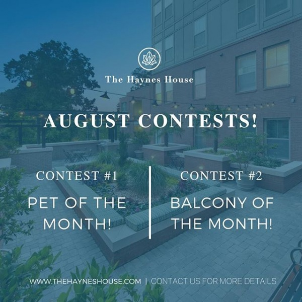 We've got TWO chances for you to win an awesome prize this month!  Contest #1 Who's the most awesome furry friend at The Haynes House? Is it your pawsome pet?  Let us know by entering the official Haynes House Pet of the Month Contest! Drop your cutest pet pic in the comments below or tag us in your photo on Instagram (@thehayneshouse)! Contest #2 No pet? No problem. Here's your chance to show off your excellent taste in outdoor decor!  Enter our Balcony of the Month Contest by sharing a picture of your decked-out deck below, or tagging us in your balcony photo in Instagram (@thehayneshouse). The winner will receive an exclusive gift basket from us! We can't wait to see your stuff! • • • • • #thehayneshouse #hayneshouse #hayneshouseapartments #thehayneshouseatl #discoveratl #exploreatl #atl #atlantaga #buckhead #atlantaapartments #luxuryapartment #luxuryliving #buckheadatlanta #atlantahomes #forrent #nowrenting #luxuryrentals #atlantarentals #peachtreehills #piedmontheights